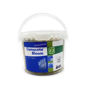 bloom-2-3-500g
